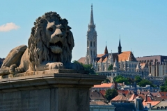 Lion on Chain Bridge & Matthias Church