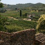 1 Day in Tuscany