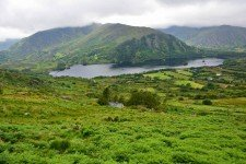 Ring of Beara