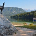 Find Beauty & Tranquility at Lake Bohinj