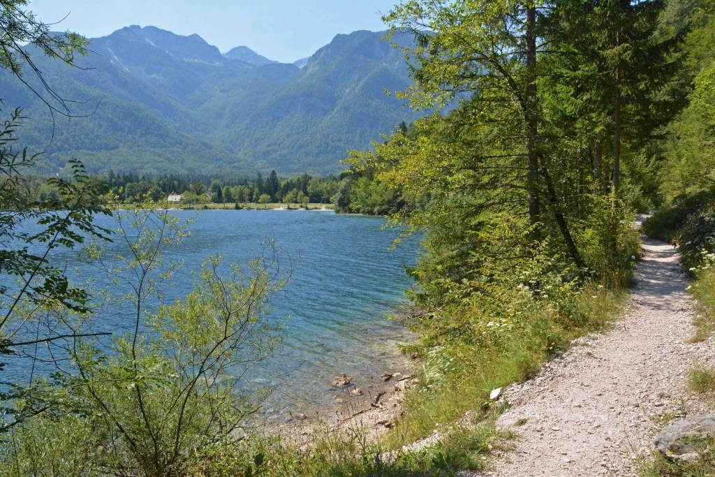 Trail Along Lake Bohinj