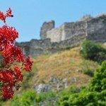 Discover Devin Castle in Bratislava