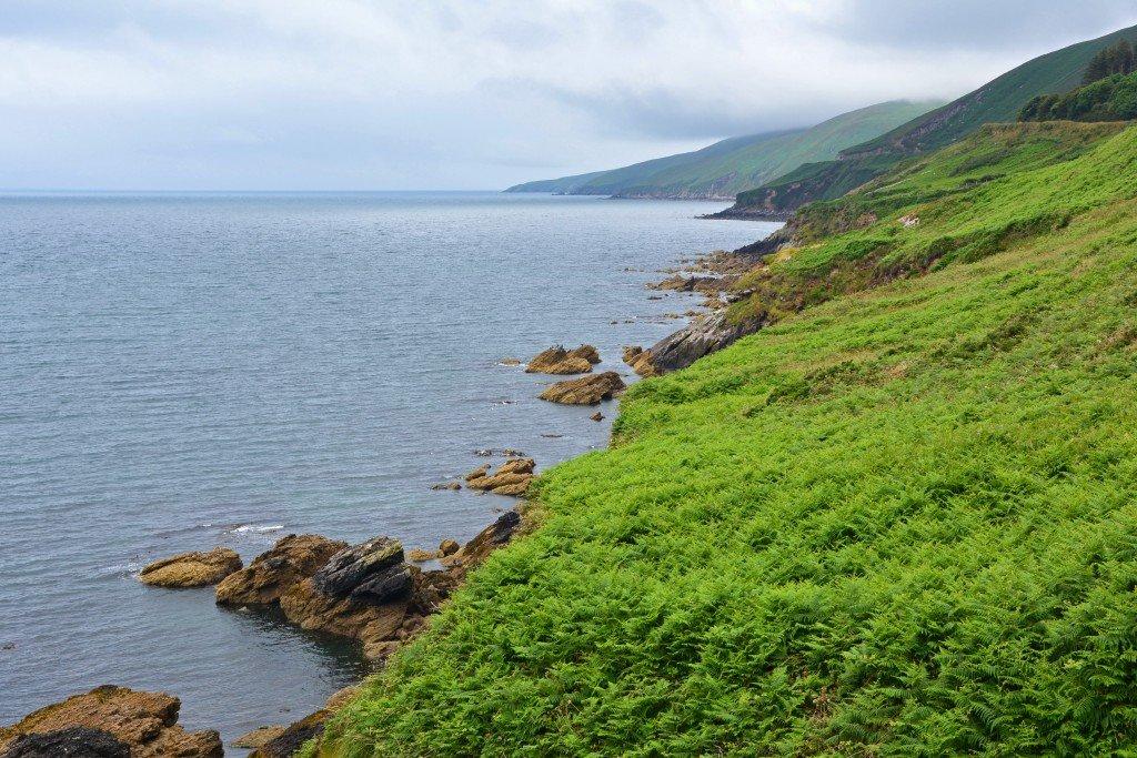 Dingle Peninsula Coast Ireland