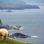 Slea Head Drive – Cruising The Dingle Peninsula Coast