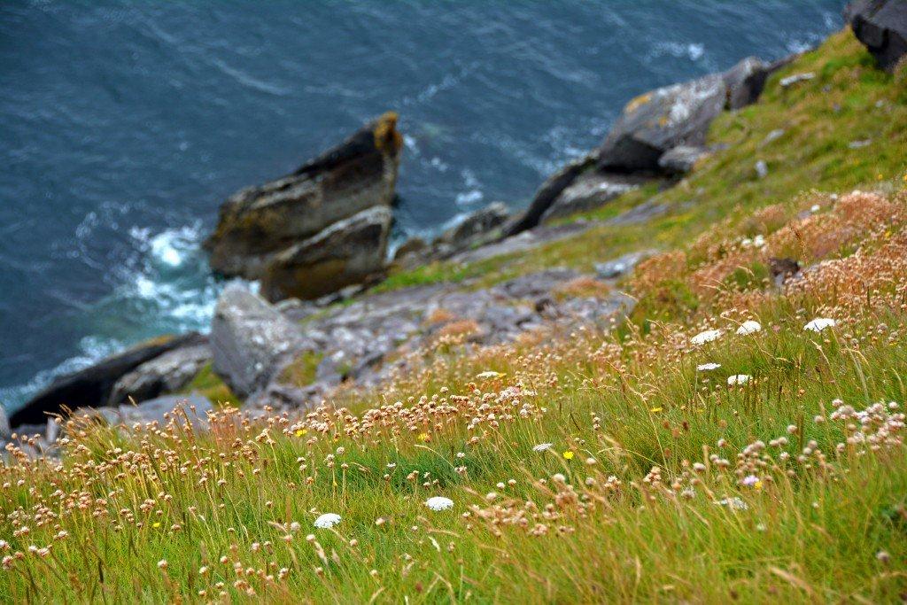 Ireland Mountain Cliff
