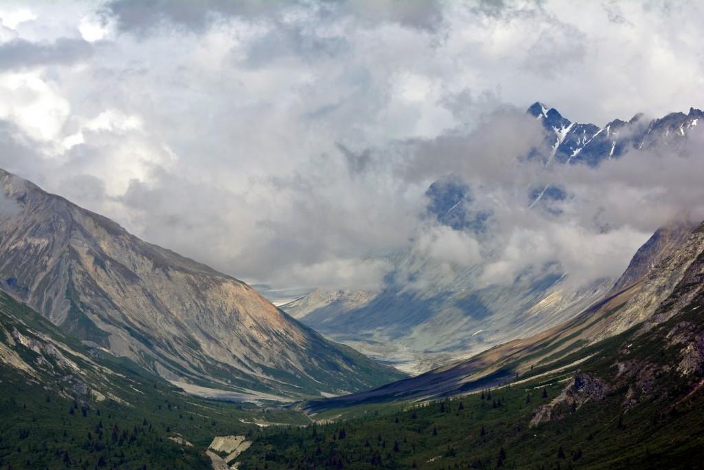 Glacier Bay (165)