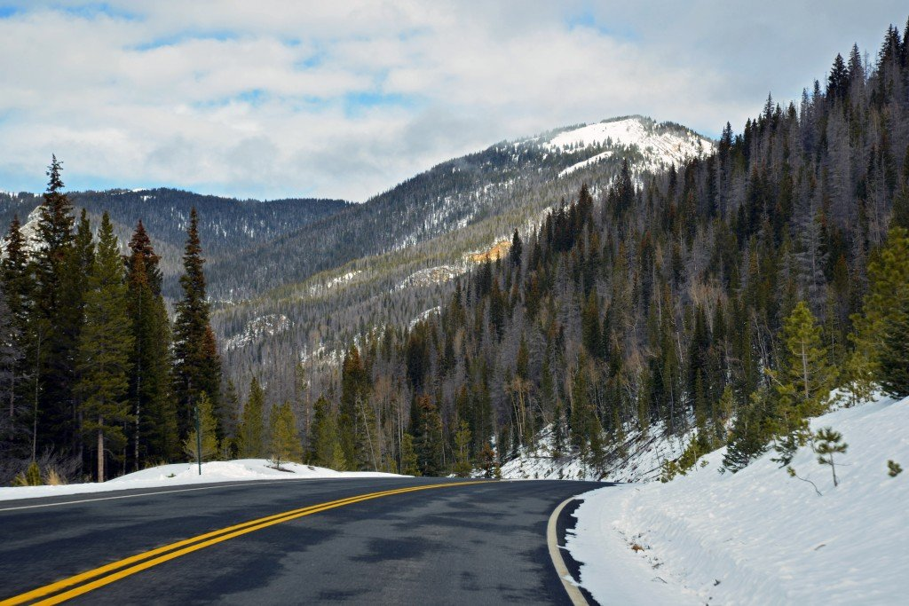 Road through Rocky Mountain National Park