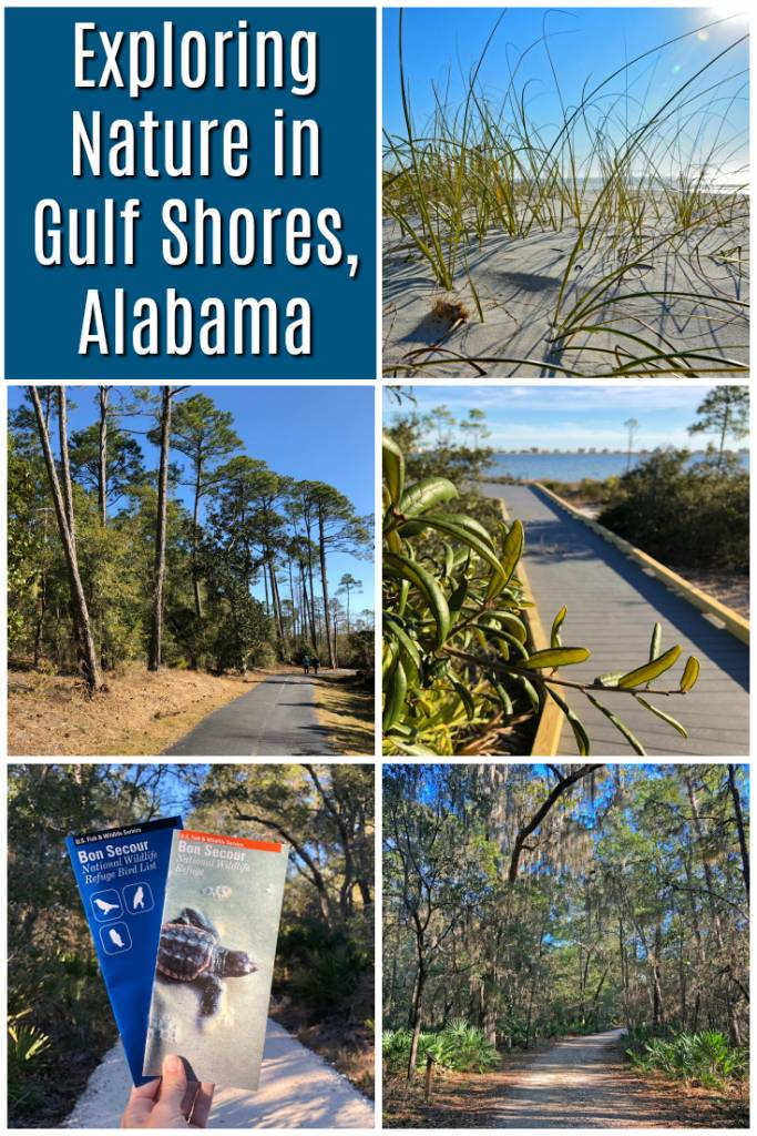 Looking for things to do in Gulf Shores Alabama outside? We've got some ideas for you! Check out this post for natural Gulf Shores attractions. #gulfshores #gulfshoresal #thingstodogulfshores #visitalbeaches #coastalalabama