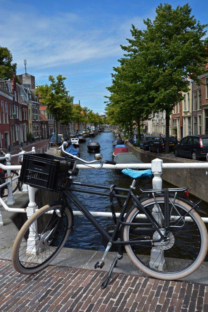 Haarlem, NL (101)