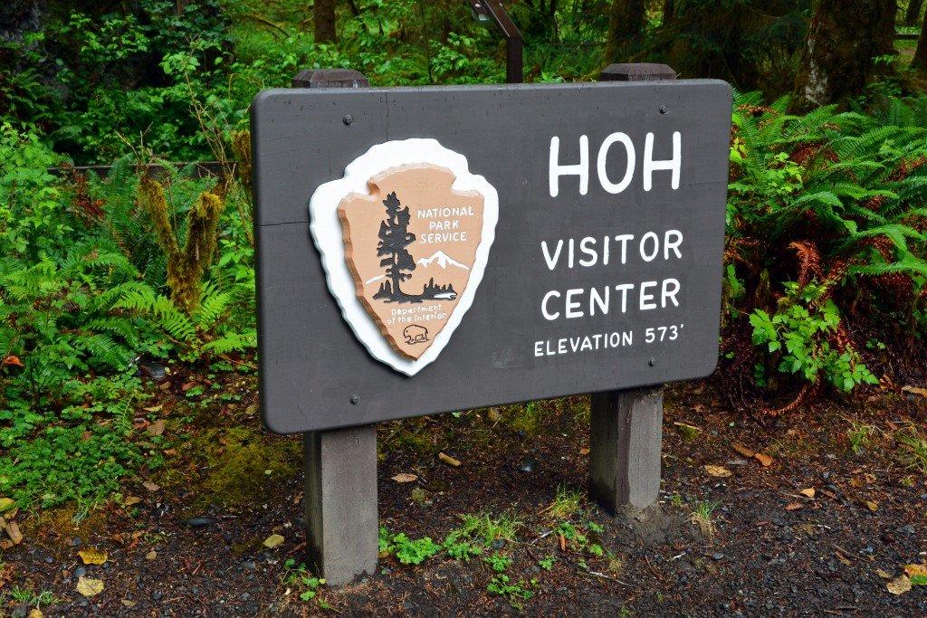 Hoh Rain Forest (16)