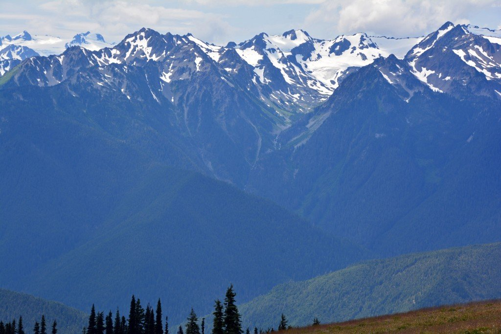 Hurricane Ridge (22)