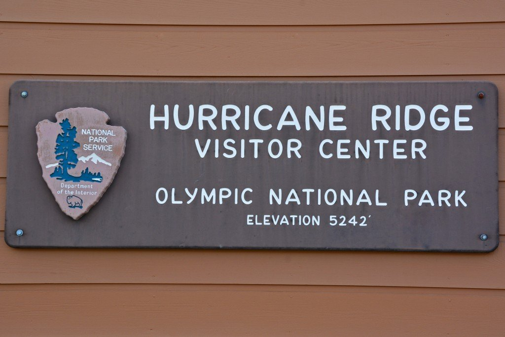 Hurricane Ridge (29)