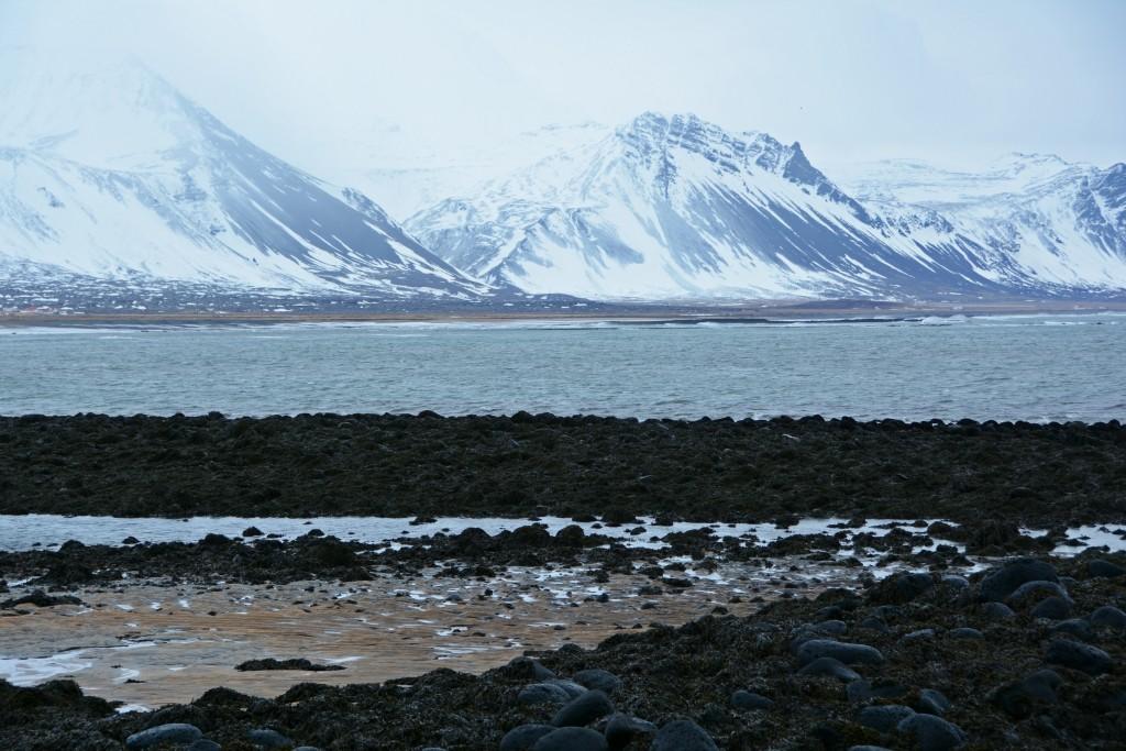 Iceland Mar14 (118)