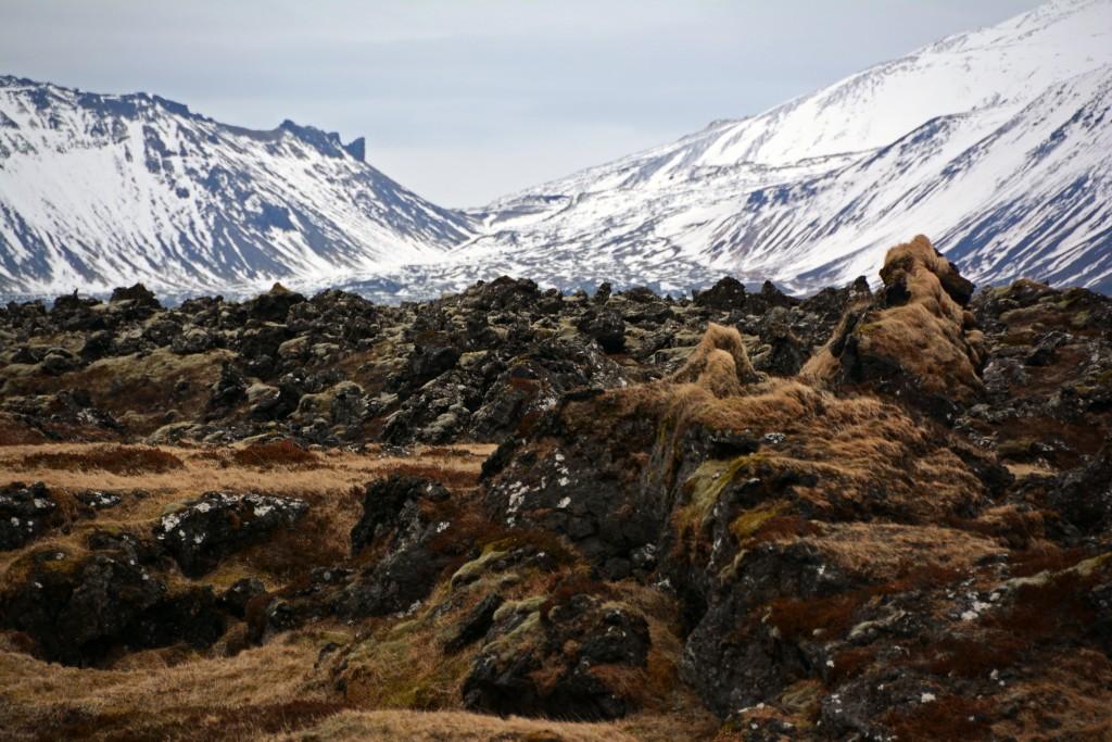 Iceland Mar14 (157)