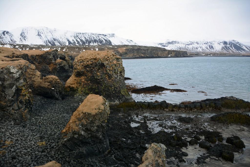 Iceland Mar14 (159)