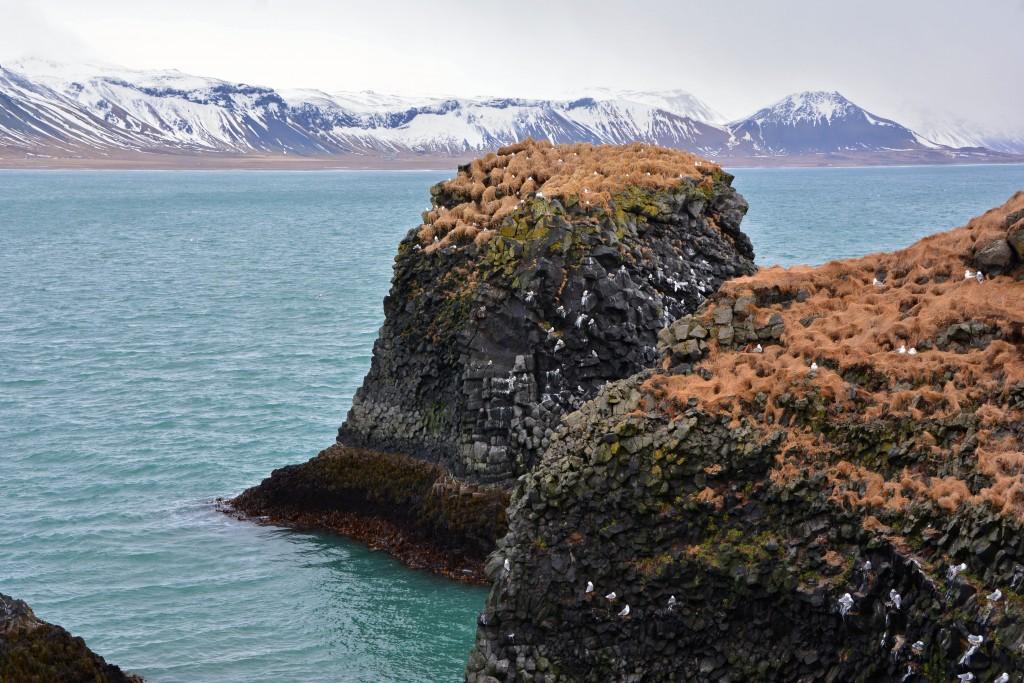 Iceland Mar14 (173)