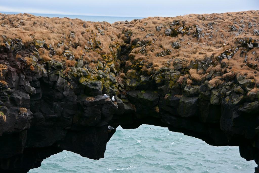 Iceland Mar14 (180)