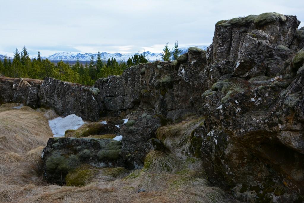 Iceland Mar14 (324)