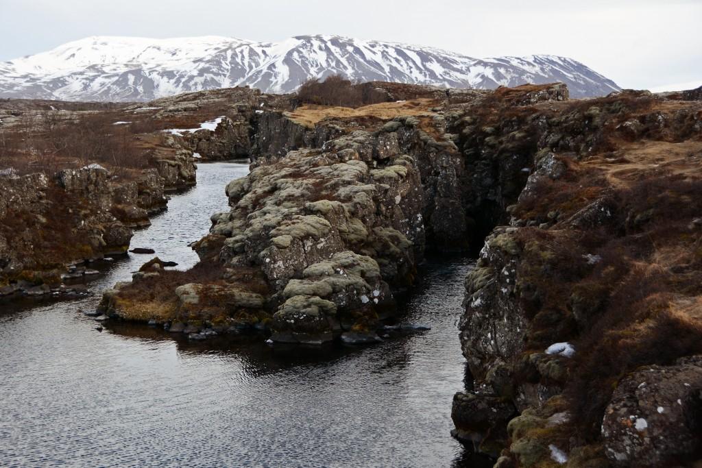 Iceland Mar14 (328)