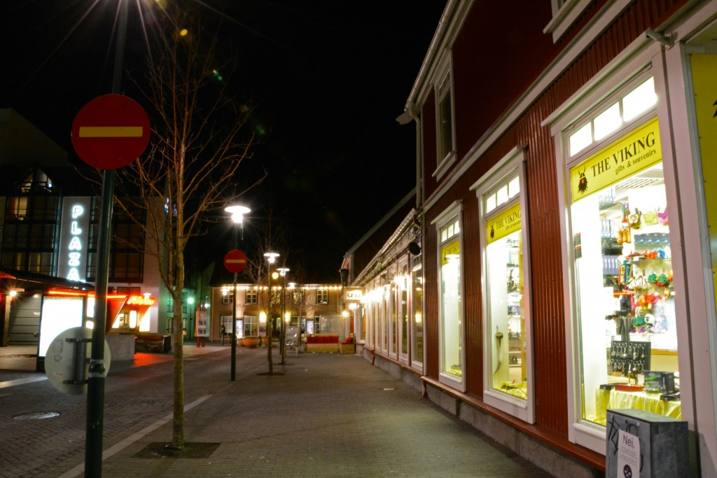Iceland Mar14 (443)