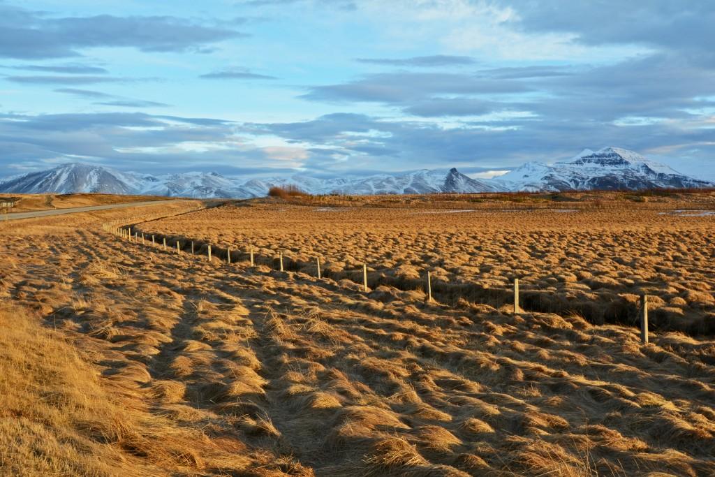 Iceland Mar14 (82)