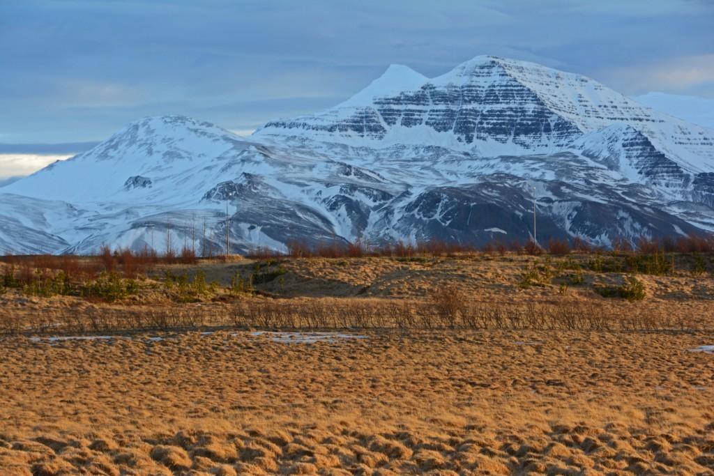 Iceland Mar14 (84)