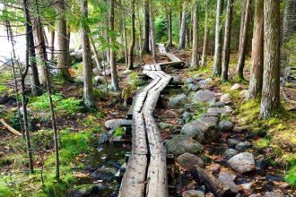 Acadia National Park Hiking – Best Easy Hikes in Acadia