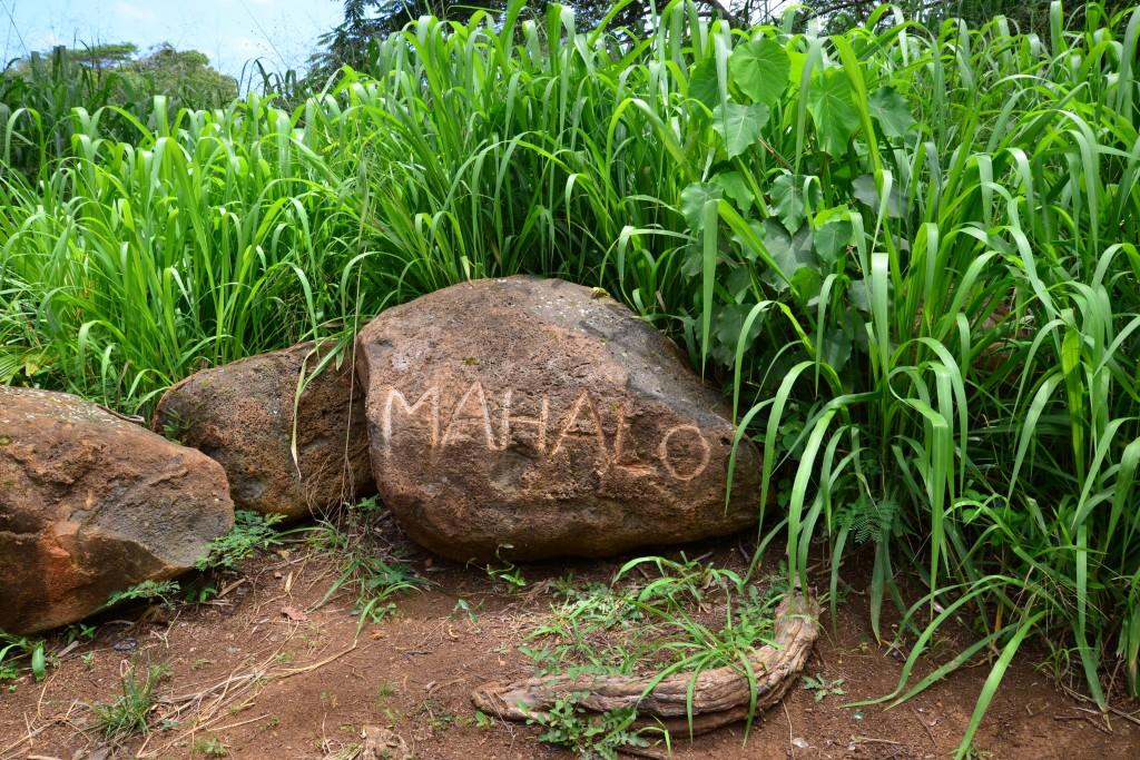 Kauai Mahalo Rock