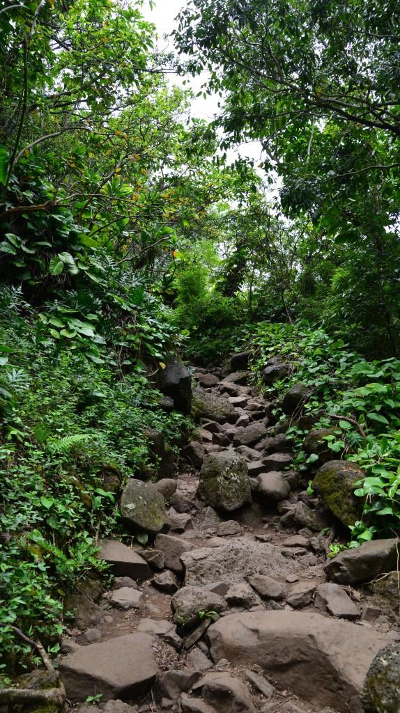Kalalau Trail (Na Pali Coast)
