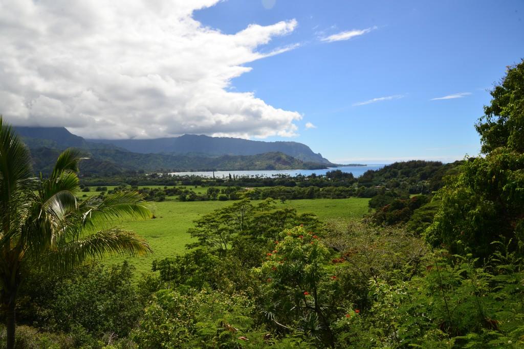 Hanalei Bay Scenic Lookout