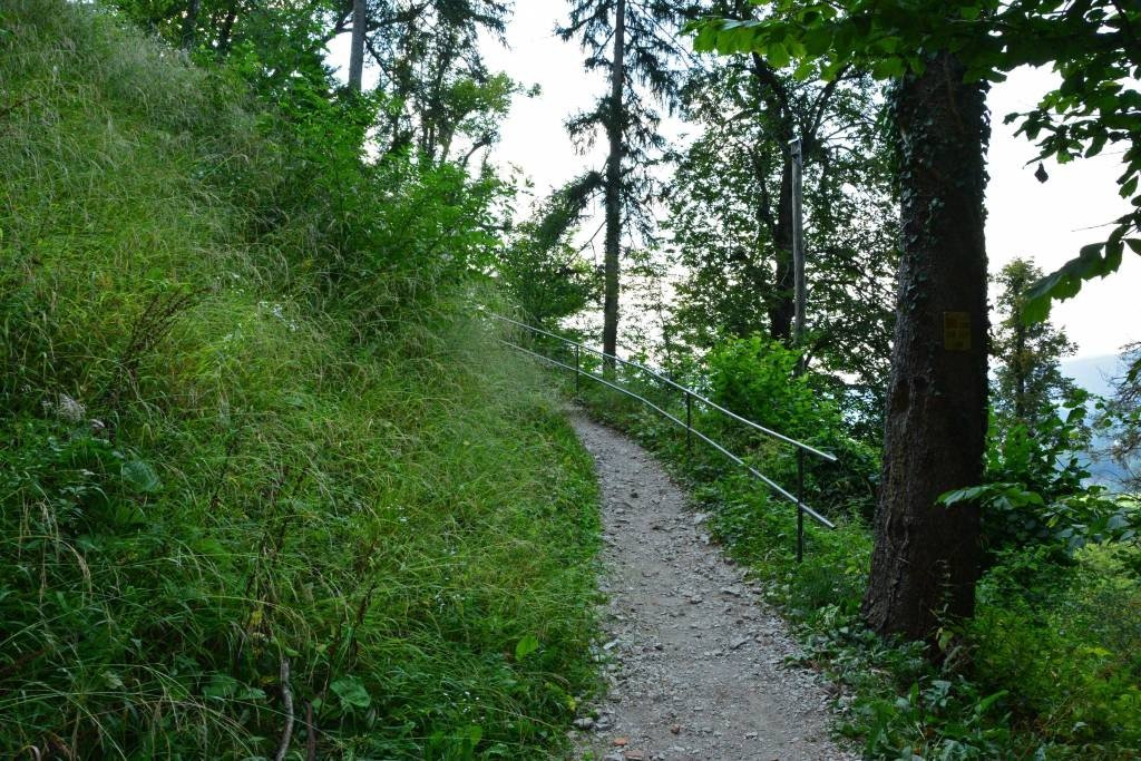 Trail near Bled Castle Lake Bled
