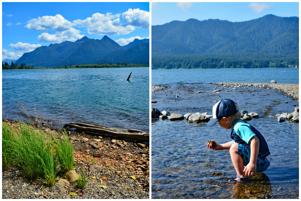 lake quinault swimming