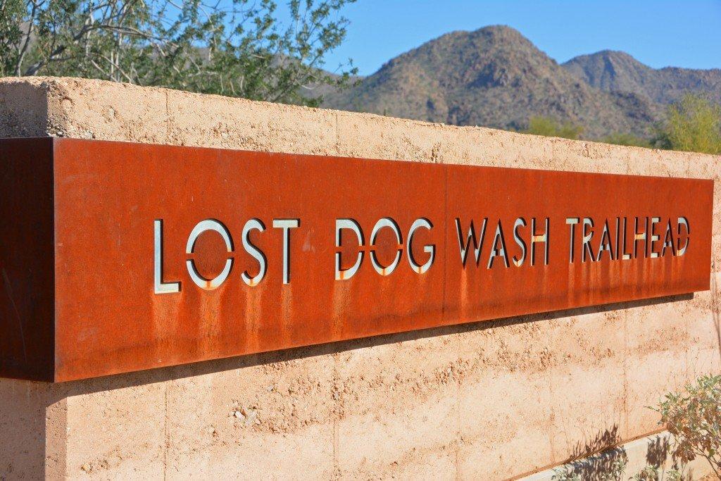 LostDogWash (1)