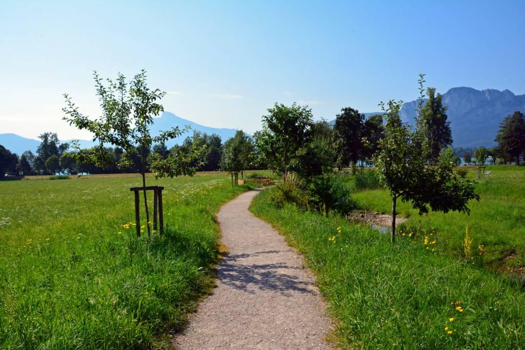 Paved walk in Austria