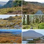 The 6 National Parks of Ireland