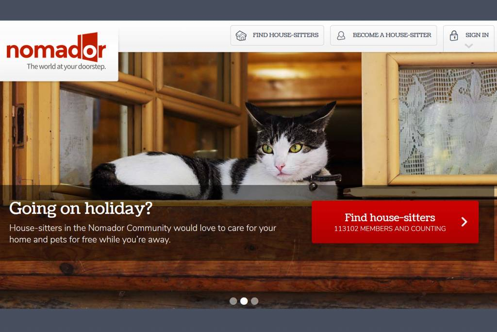 where to find a housesitter
