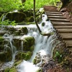 Things to Know Before Visiting Plitvice Lakes National Park in Croatia