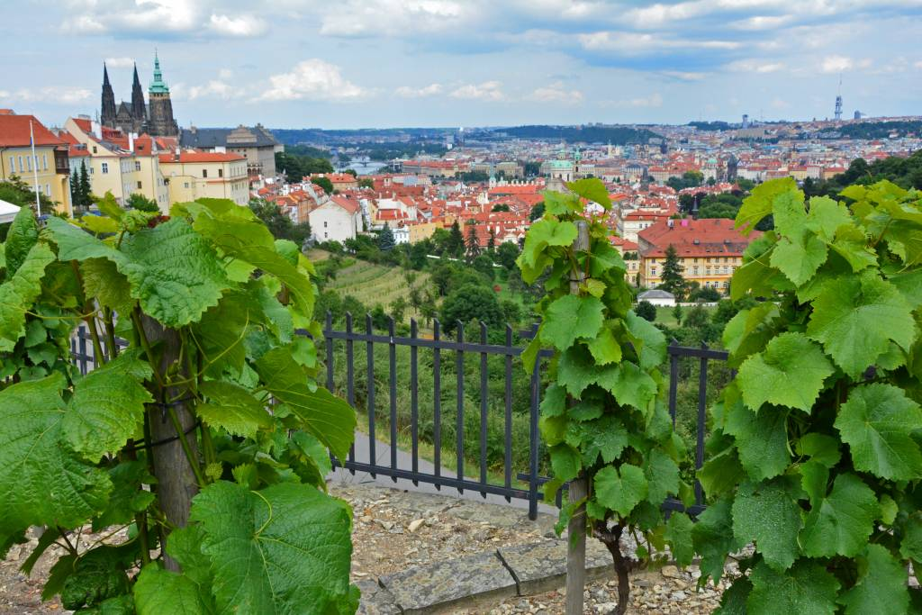 Best Views of Prague (328)