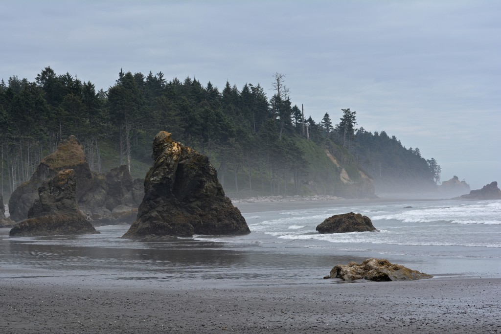 Sea Stacks Ruby Beach Olympic Peninsula Washington