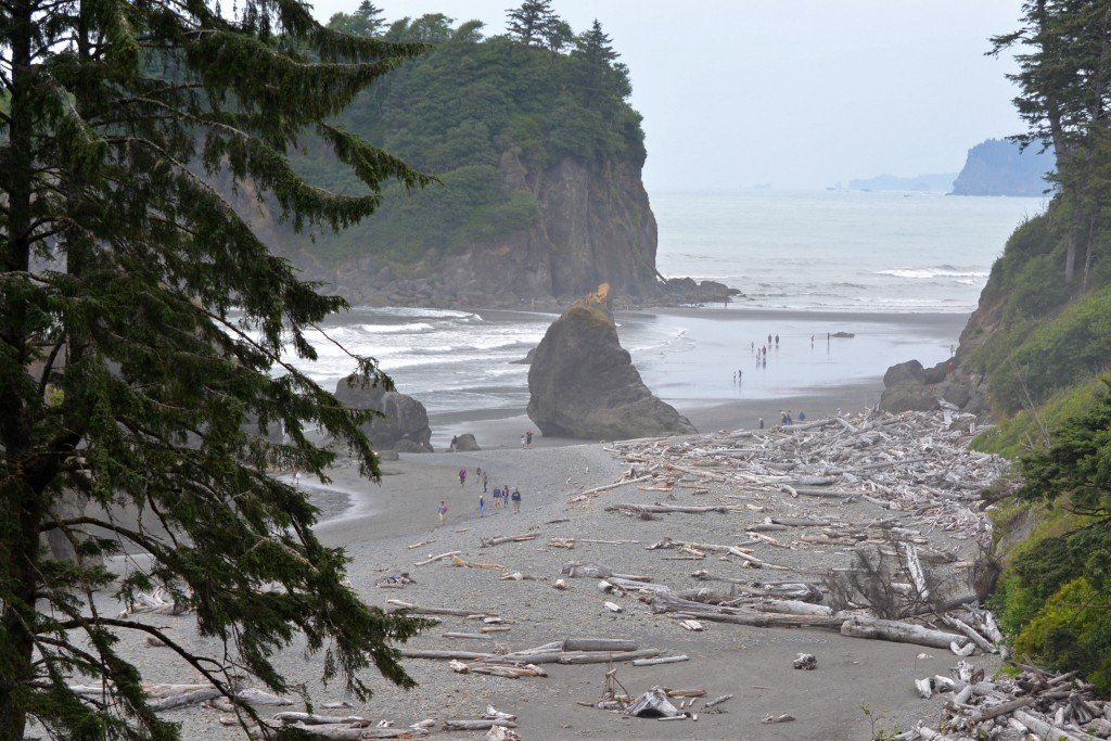Ruby Beach driftwood and sea stack