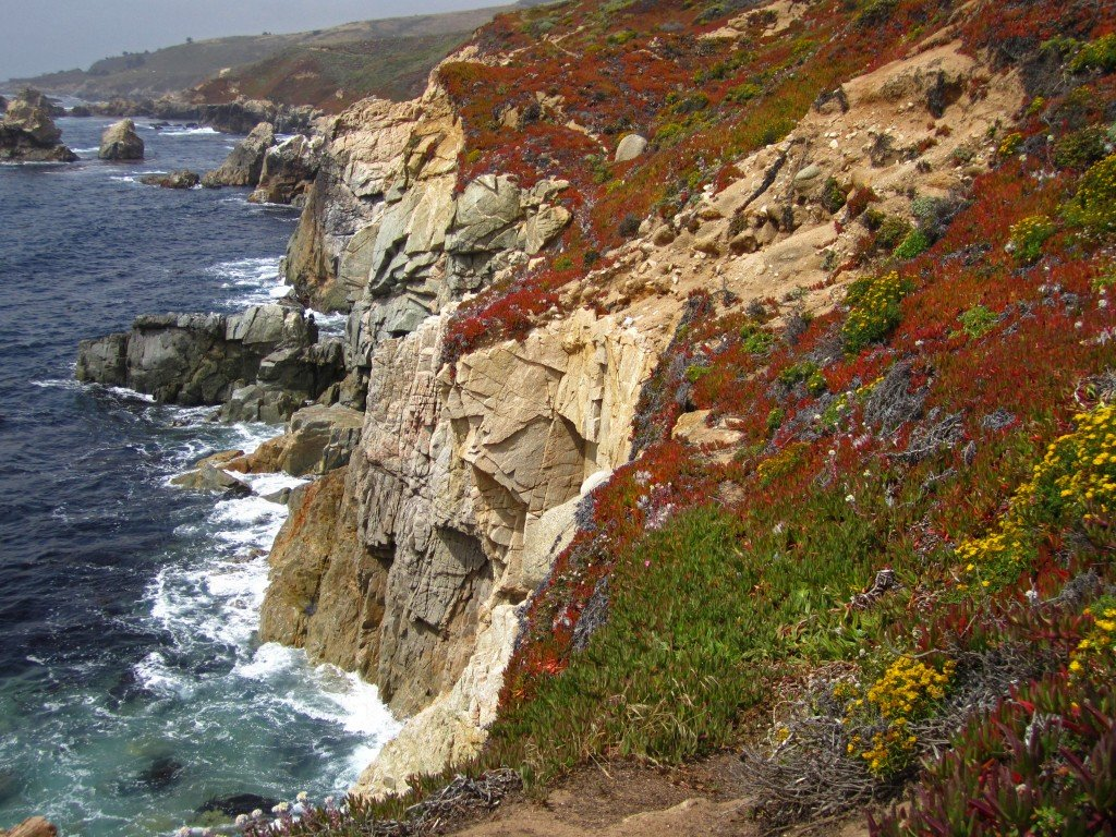 Rugged CA Coast (3)
