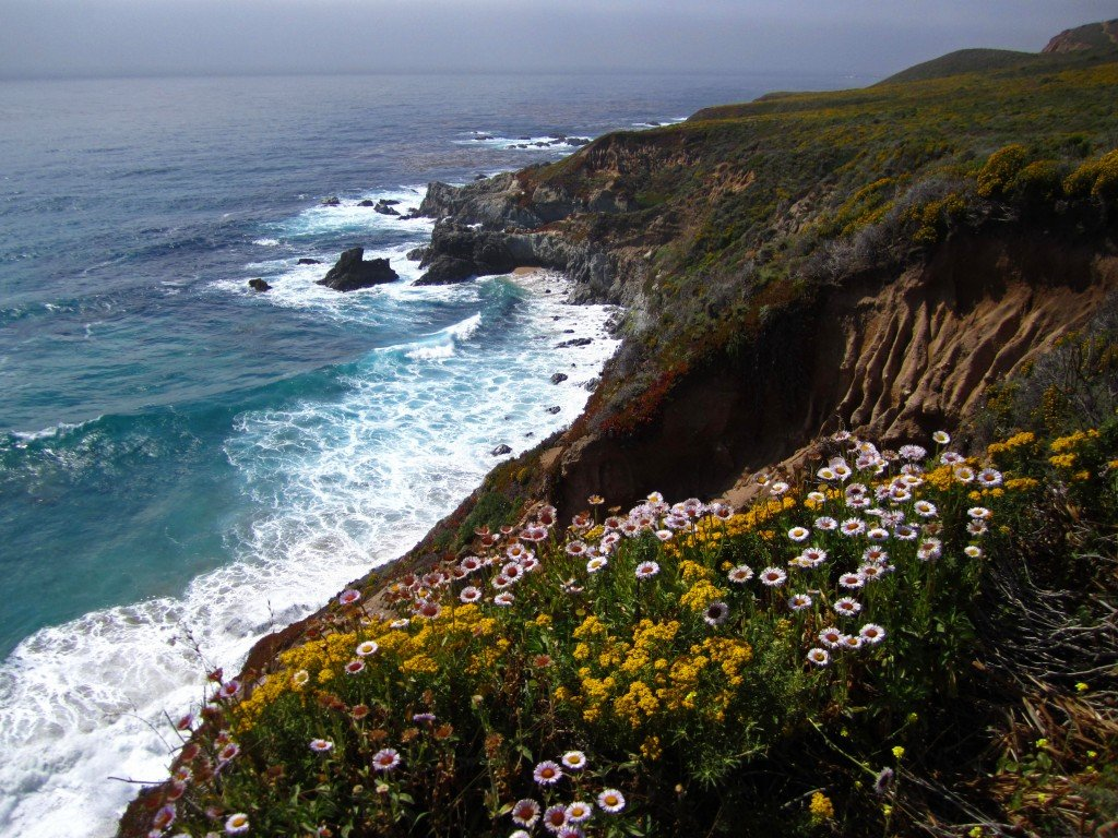 Rugged CA Coast (4)