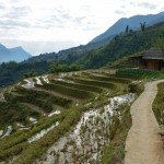 Cooking & Culture at a Sapa Homestay
