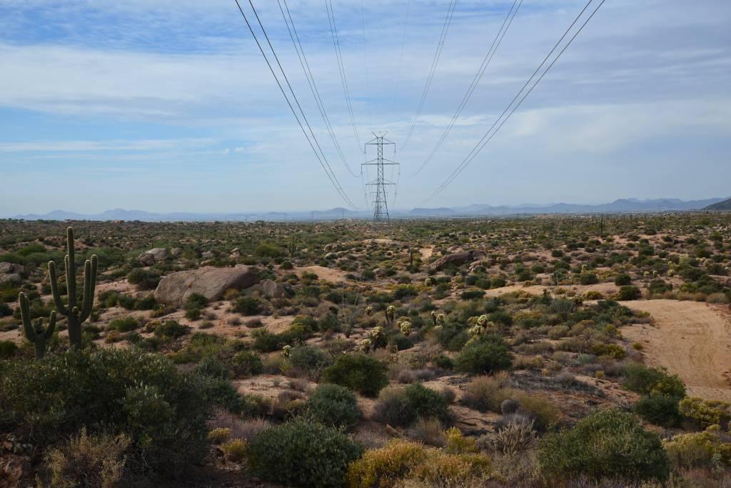 Scottsdale (681)