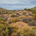Browns Ranch Trailhead- Scottsdale