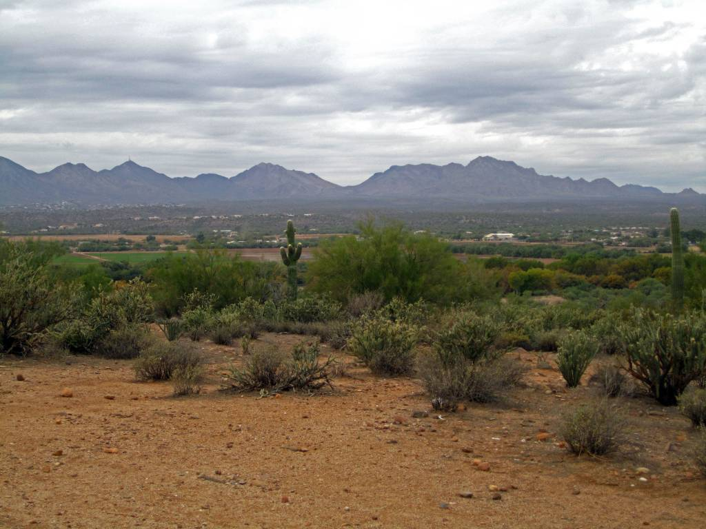 Scottsdale (880)