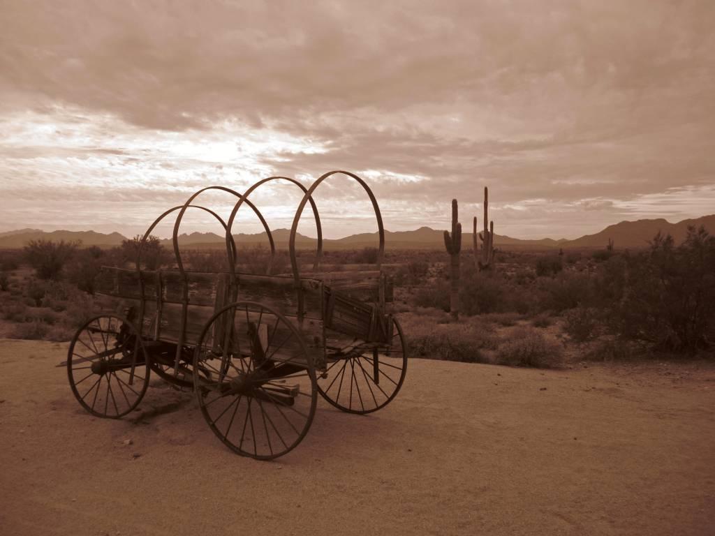 Scottsdale (903)