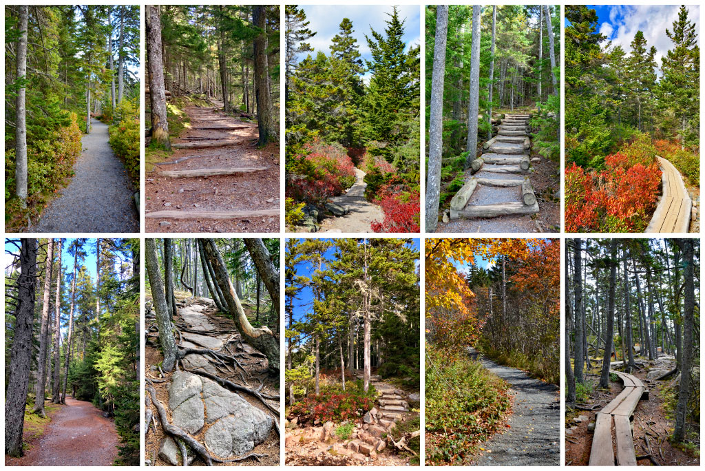 Acadia National Park Hikes