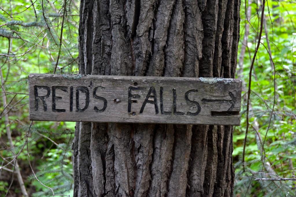 Reid Falls Skagway