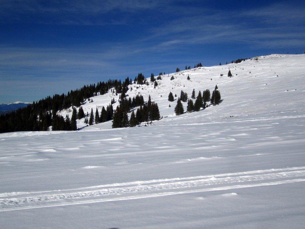 Snowmobile (46)